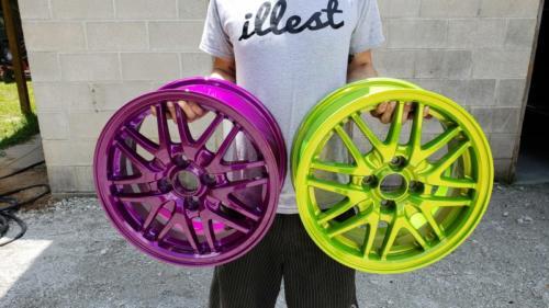 Wild Wheel Colors